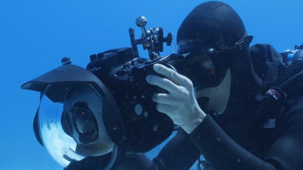 至極の楽園 世界の海をのぞいて見よう! 水中世界の楽しみ方