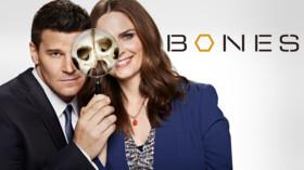 BONES (ボーンズ) −骨は語る− 第12話 ヒーローの死動画フル無料視聴