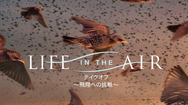 テイクオフ ~飛翔への挑戦~ 第2話 (字) 大空の覇者