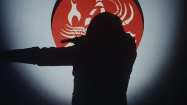 仮面ライダーV3 見た! デストロン首領の顔!!