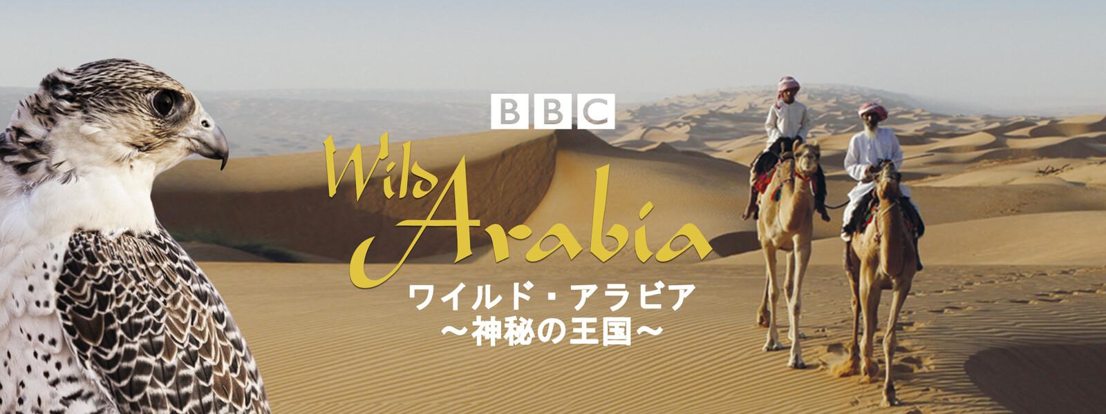 ワイルド・アラビア ~神秘の王国~の動画 - ワイルド・ブラジル ~情熱の大陸~