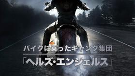バイクに乗ったギャング集団「ヘルズ・エンジェルス」無料視聴
