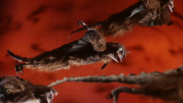 仮面の忍者 赤影 卍党編:鳥獣むささび