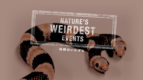 自然のいたずら シーズン1 第1話 (字) 車を繭で覆う虫