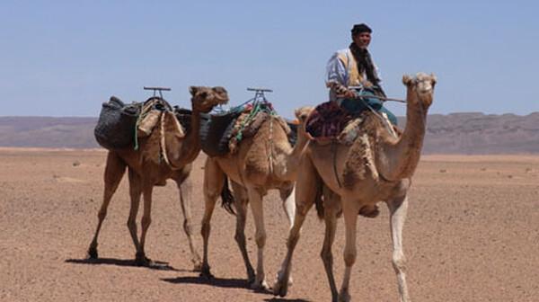 地球絶景紀行 第12回 静寂の大地 サハラへ (モロッコ)