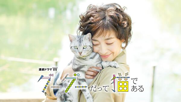 グーグーだって猫である 第1話 その恋にはアプローチしない。